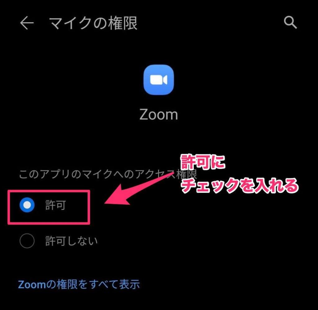 マイク zoom パソコン